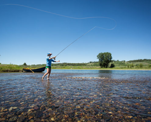 Woman fly fishes on the snake river in grand teton national park