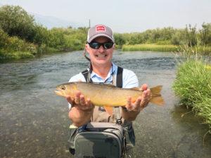 Cutthroat trout on Fish Creek